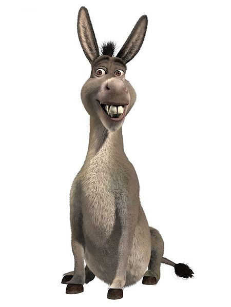 Gallery Photos And Information Donkey Shrek Face